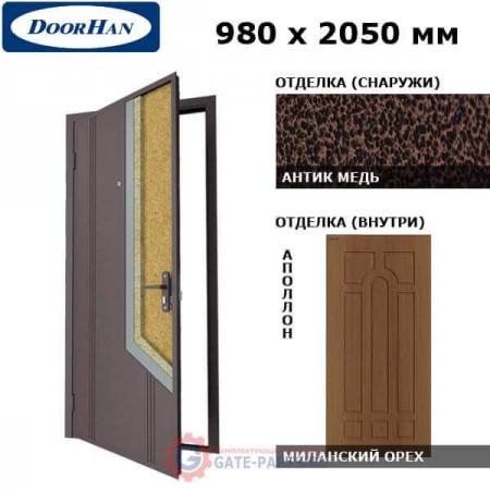 D-980-NO/AM/MPWM/AP/R/N/v Doorhan Дверь НЕО(O) - 980х2050, правая (шт.)