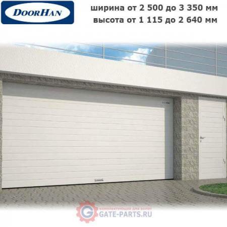 Комплект гаражных секционных ворот с пружинами растяжения RSD01SC